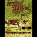 Denali National Park and Preserve 2 by Eitan S. Kaplan for See America - 3