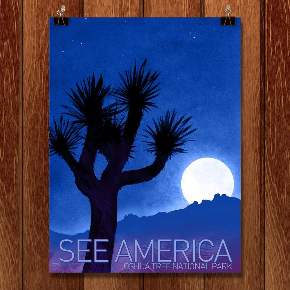 Joshua Tree National Park by Adam S. Doyle for See America - 1