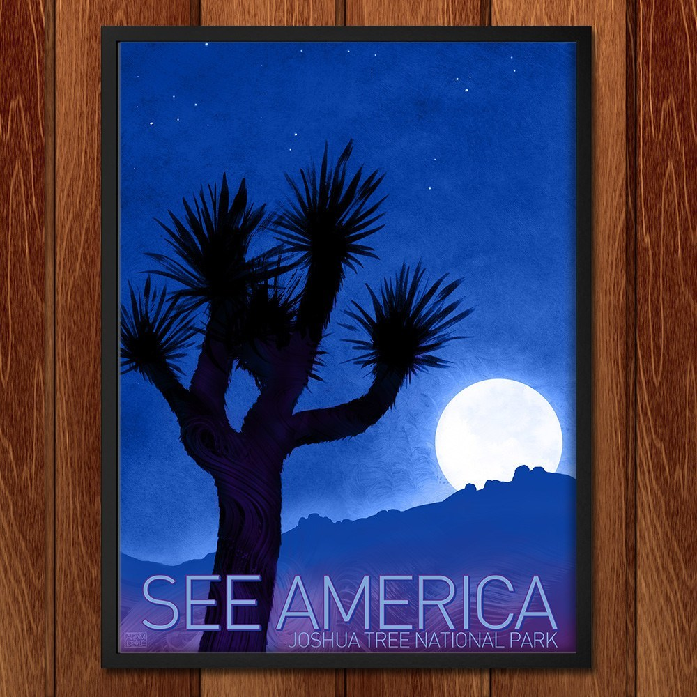 Joshua Tree National Park by Adam S. Doyle for See America - 2