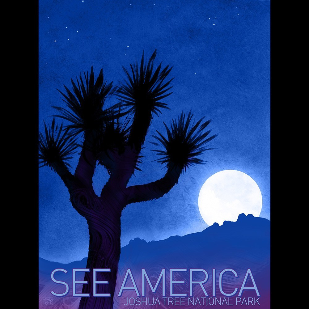 Joshua Tree National Park by Adam S. Doyle for See America - 3