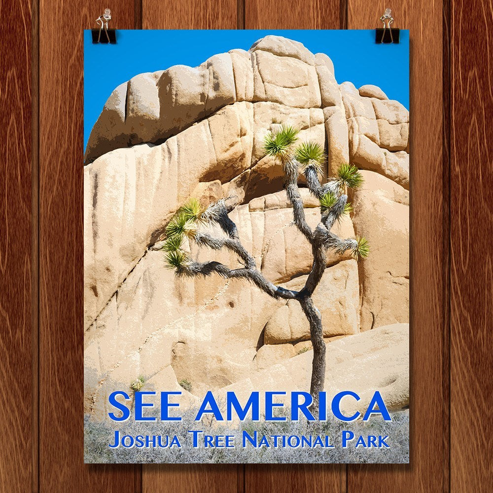 Joshua Tree National Park by Zack Frank for See America - 1