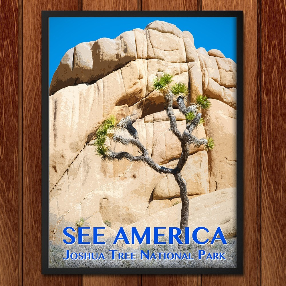 Joshua Tree National Park by Zack Frank for See America - 2