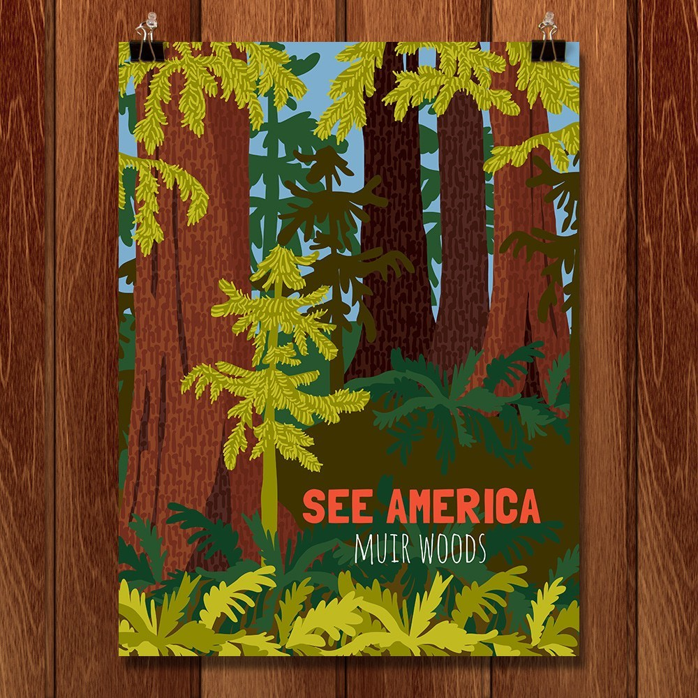 Muir Woods National Monument by Shayna Roosevelt for See America - 1