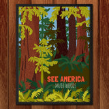 Muir Woods National Monument by Shayna Roosevelt for See America - 2