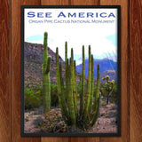 Organ Pipe Cactus National Monument 2 by Ann Huston for See America - 2