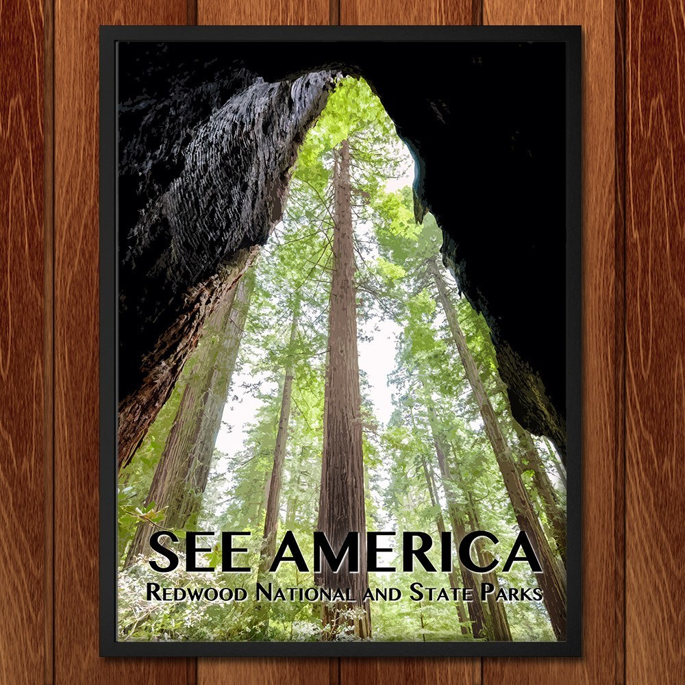Redwood National and State Parks by Zack Frank for See America - 2