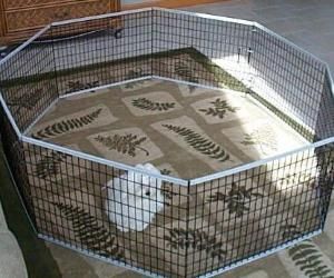 Folding 8 Panel Exercise Pen