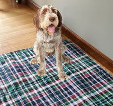 Load image into Gallery viewer, 34x36 Blue Plaid Washable Puppy Potty Pee Pee Pads