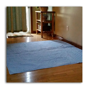 60x60 Indicator Blue Washable Puppy Pee Pee Potty Pad