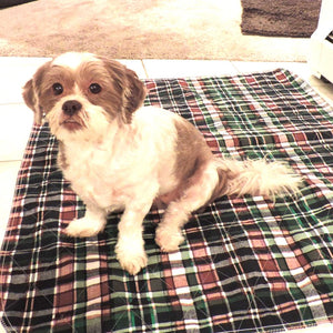PersonallyPaws.com  24x36 Blue Plaid Washable pet pads