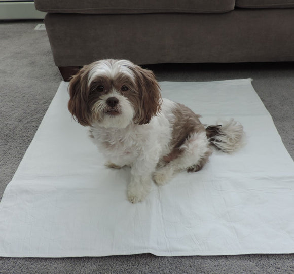 PersonallyPaws.com 30x36 Sofnit Washable Leak Proof pet pads