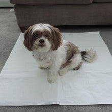 PersonallyPaws.com 24x36 Regular Washable Leak Proof potty Pads