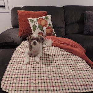 34x36 Tan/Burgundy Plaid Washable Pet Pads