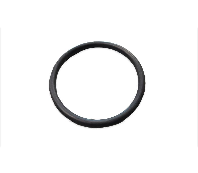 Solaxx / PureChlor Cell O-Ring