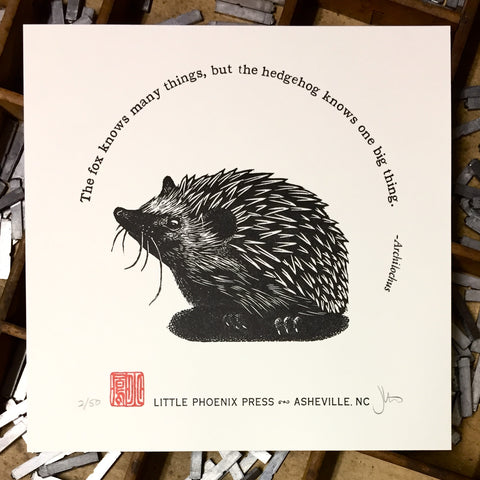 Hedgehog Knows