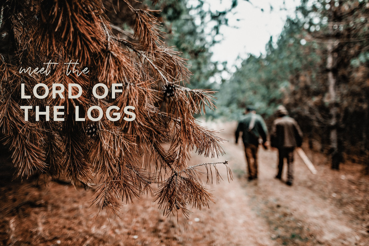 Don Sadler: Lord of the Logs