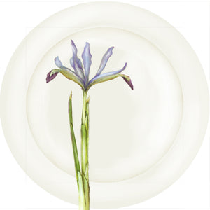 "Summer Blooms - Blue Iris 10"" Dinner Plate"