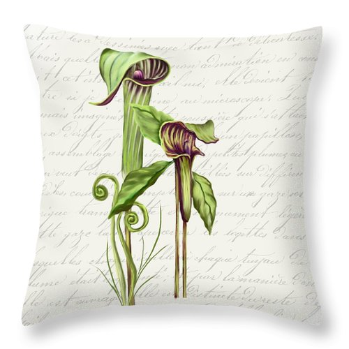Summer Blooms - Jack-in-the-pulpit #2 - Throw Pillow