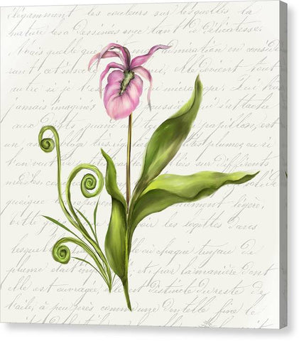Summer Blooms - Lady Slipper - Canvas Print