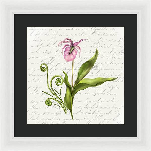 Summer Blooms - Lady Slipper - Framed Print