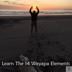 Wayapa Wuurrk - Reconnect the Disconnection with Wayapa Course
