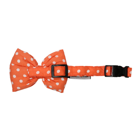 Mutt of Course Polka Salmon Bow Tie