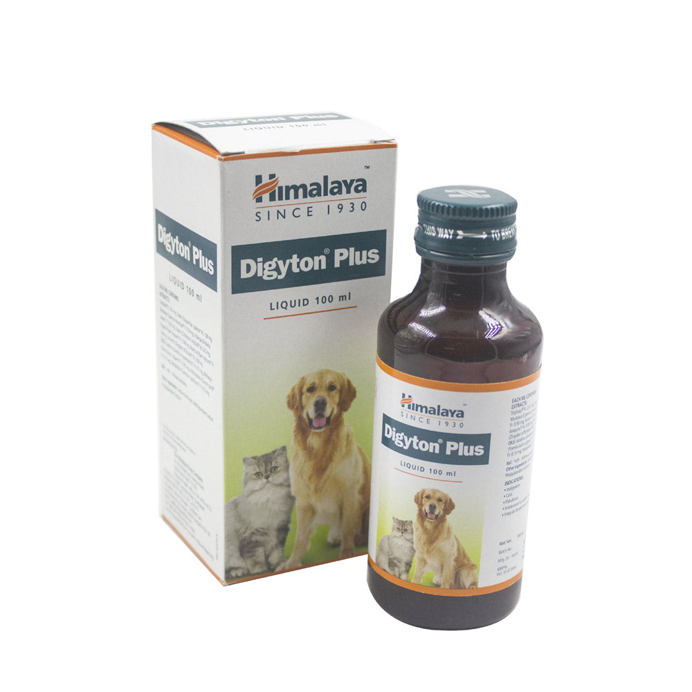 Himalaya Digyton Plus Syrup For Dogs & Cats - 100 ml
