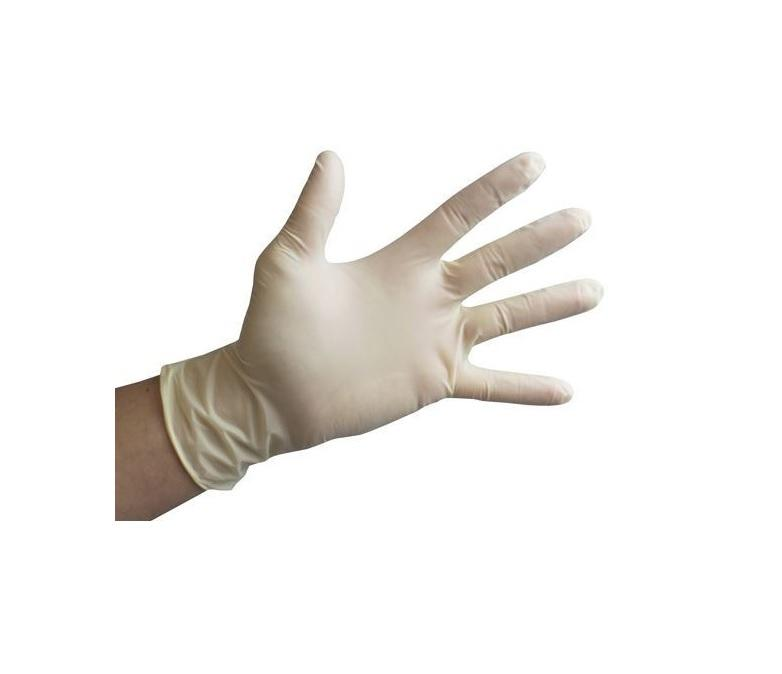 Powder-Free Latex Gloves (1000pcs) - Wholesale Priced - BAGANDCANVAS.COM