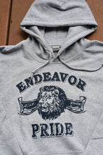 Load image into Gallery viewer, Distressed Retro Lion Hoodie Sweatshirt