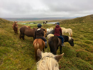 Horse riding tour through the hills of northern Iceland