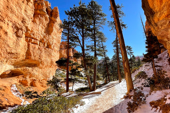 Canyon Floor Bryce Canyon National Park, Utah