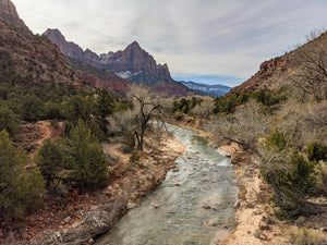 View of the Virgin River at Zion National Park in Utah