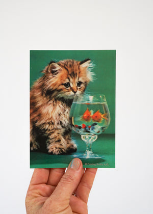 3D POSTCARD/ CAT'N'FISH
