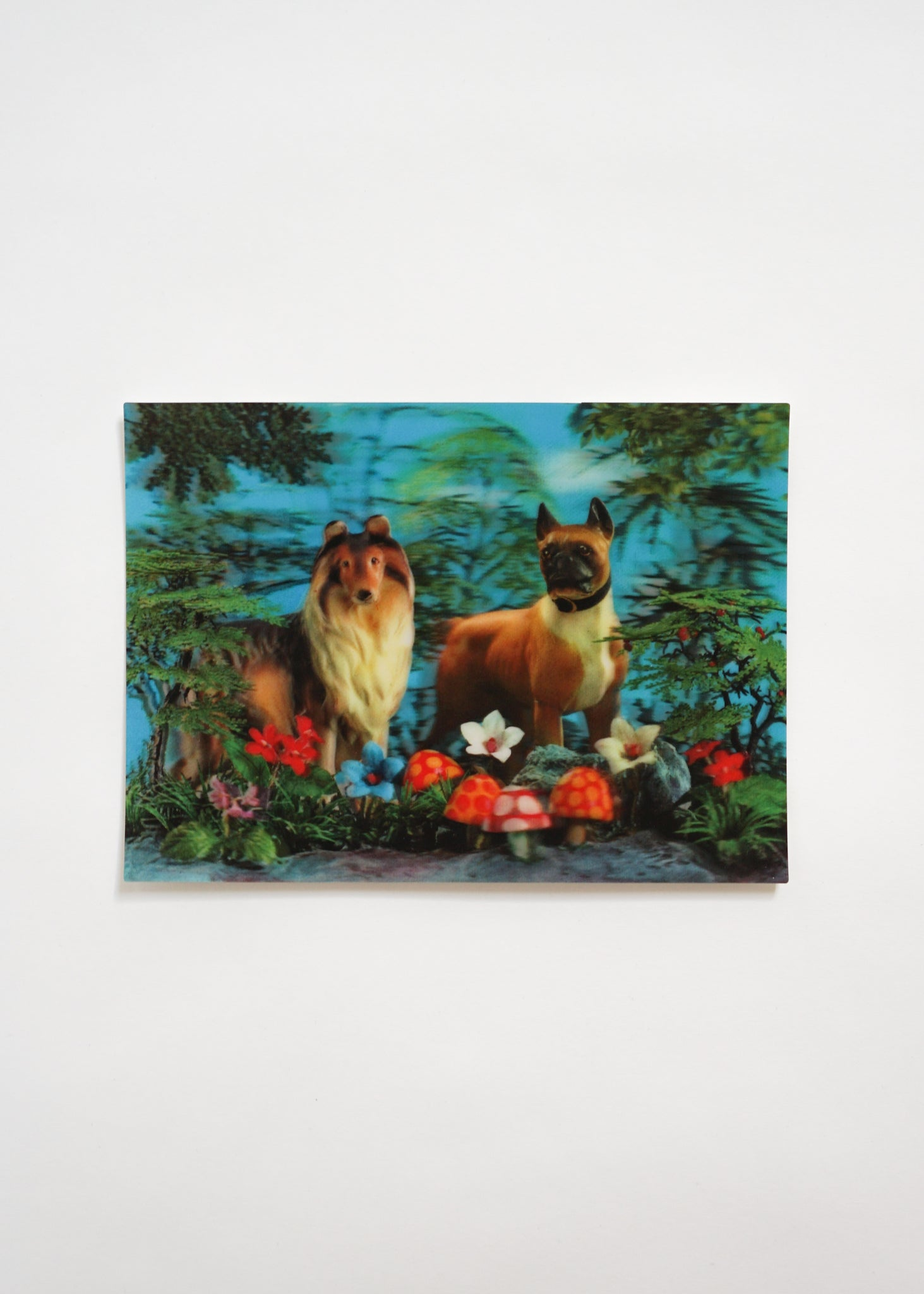 3D POSTCARD/ TWO DOGS