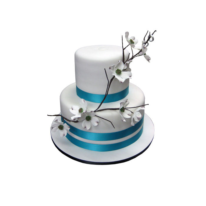 Dogwood Branch Color Pop Cake