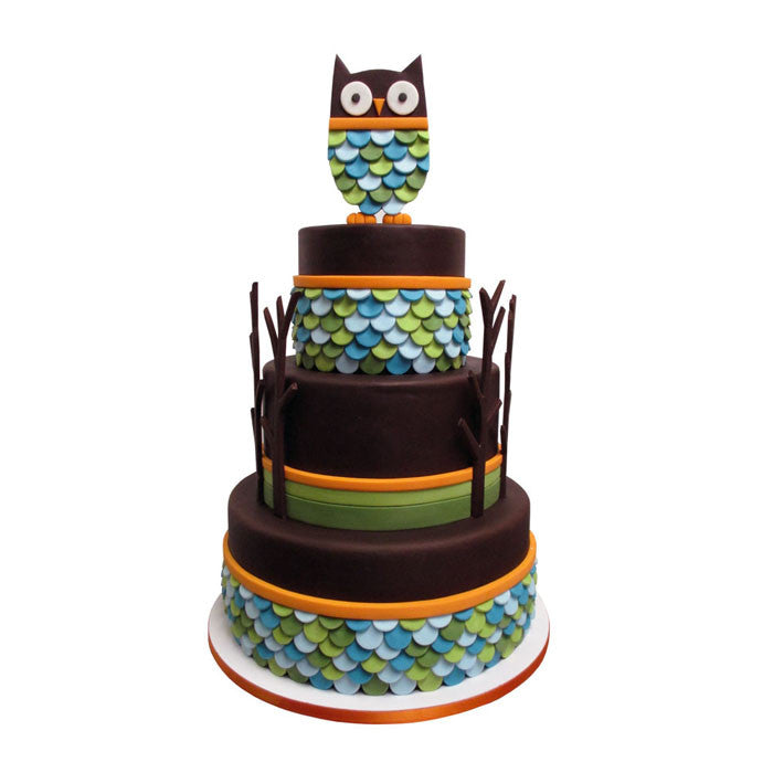 Wise Scalloped Owl Branch Cake