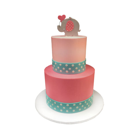 Baby Zoo Animals Shower Cake