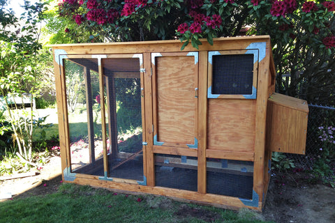 DIY predator safe chicken coop