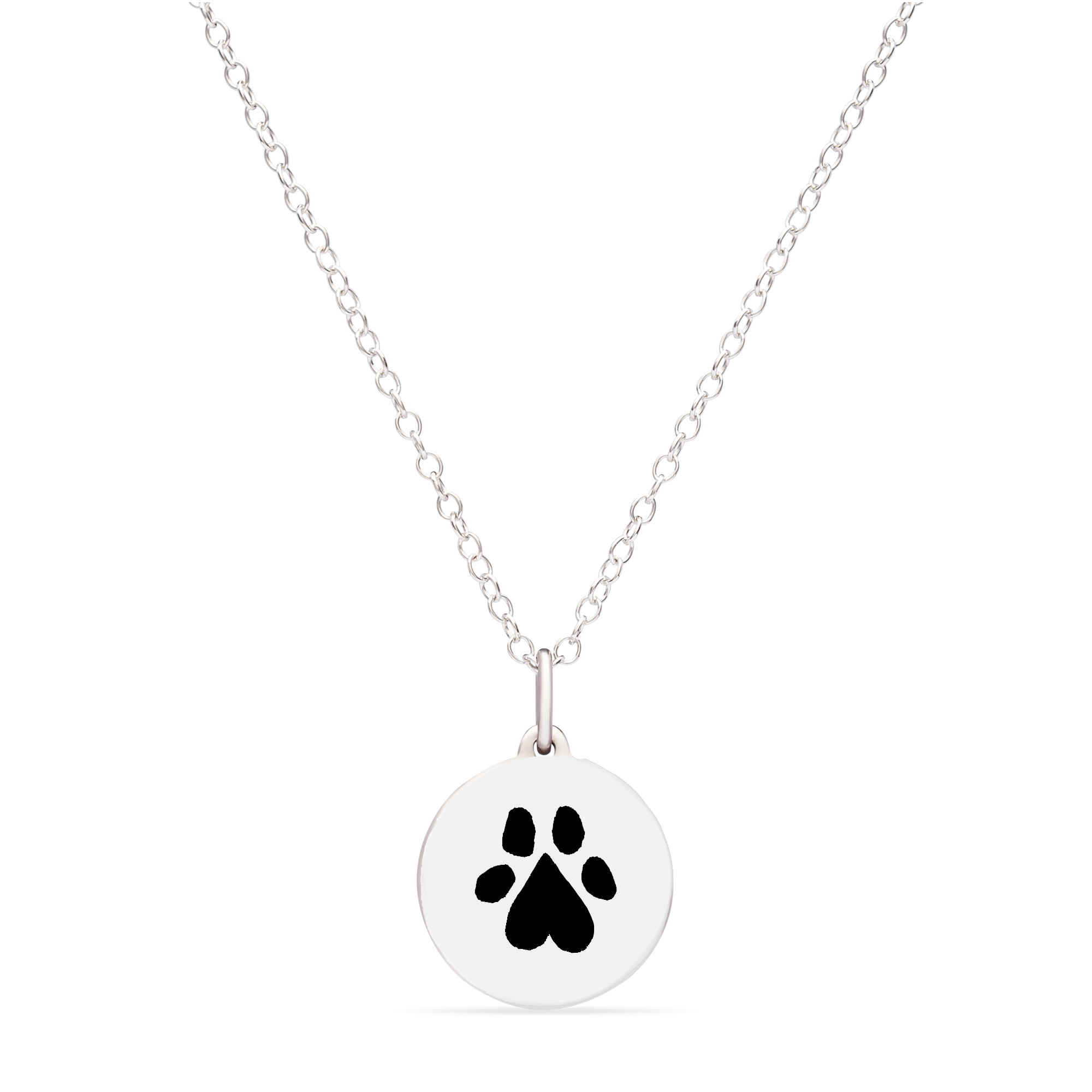 MINI PAW CHARM to benefit draw for paws