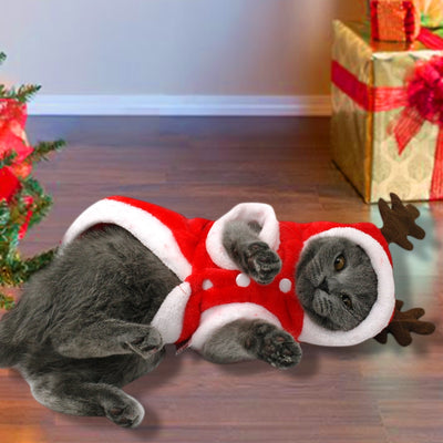 Christmas Cat Clothes Small Dogs Cats Santa Costume