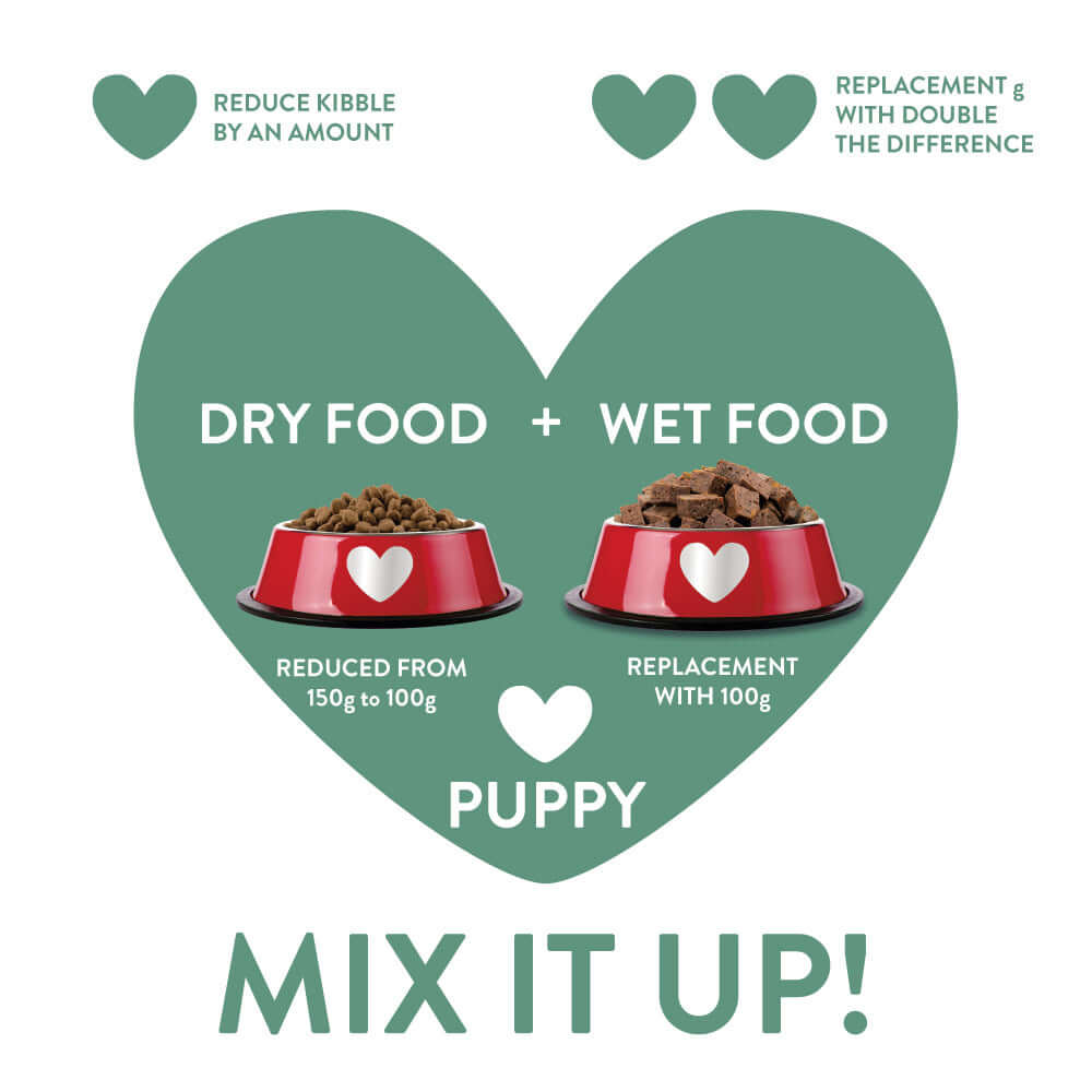 puppy-mixed-feeding-guide