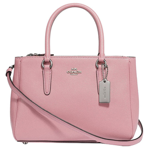 Mini Surrey Carryall-Coach-Elitify