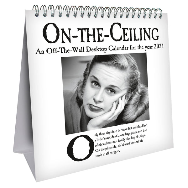 On The Ceiling Humour 2021 Desk Easel Calendar Front