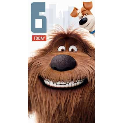Secret Life Of Pets Age 6 Card