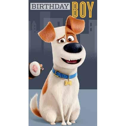 Secret Life Of Pets Birthday Boy Card