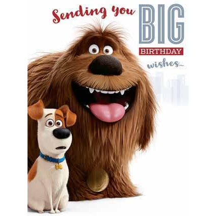 Secret Life Of Pets Large Birthday Card