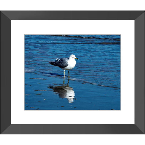 A Walk on the Beach Framed Print | Horstmann Designs, Photography Wall Art