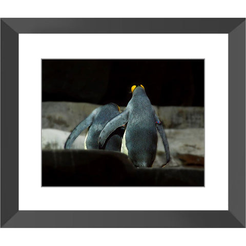 Love on Ice Framed Print | Horstmann Designs, Photography Wall Art