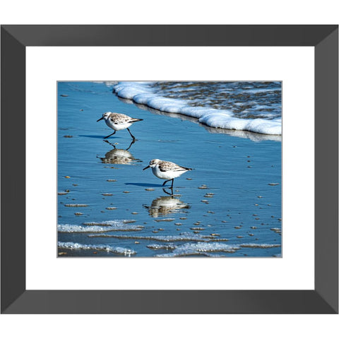 Two Gulls Framed Print | Horstmann Designs, Photography Wall Art