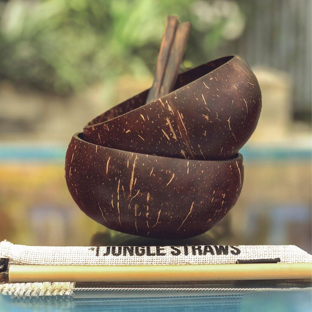 CLASSIC COCONUT BOWL SET W/ RECLAIMED WOODEN SPOON - natoorio
